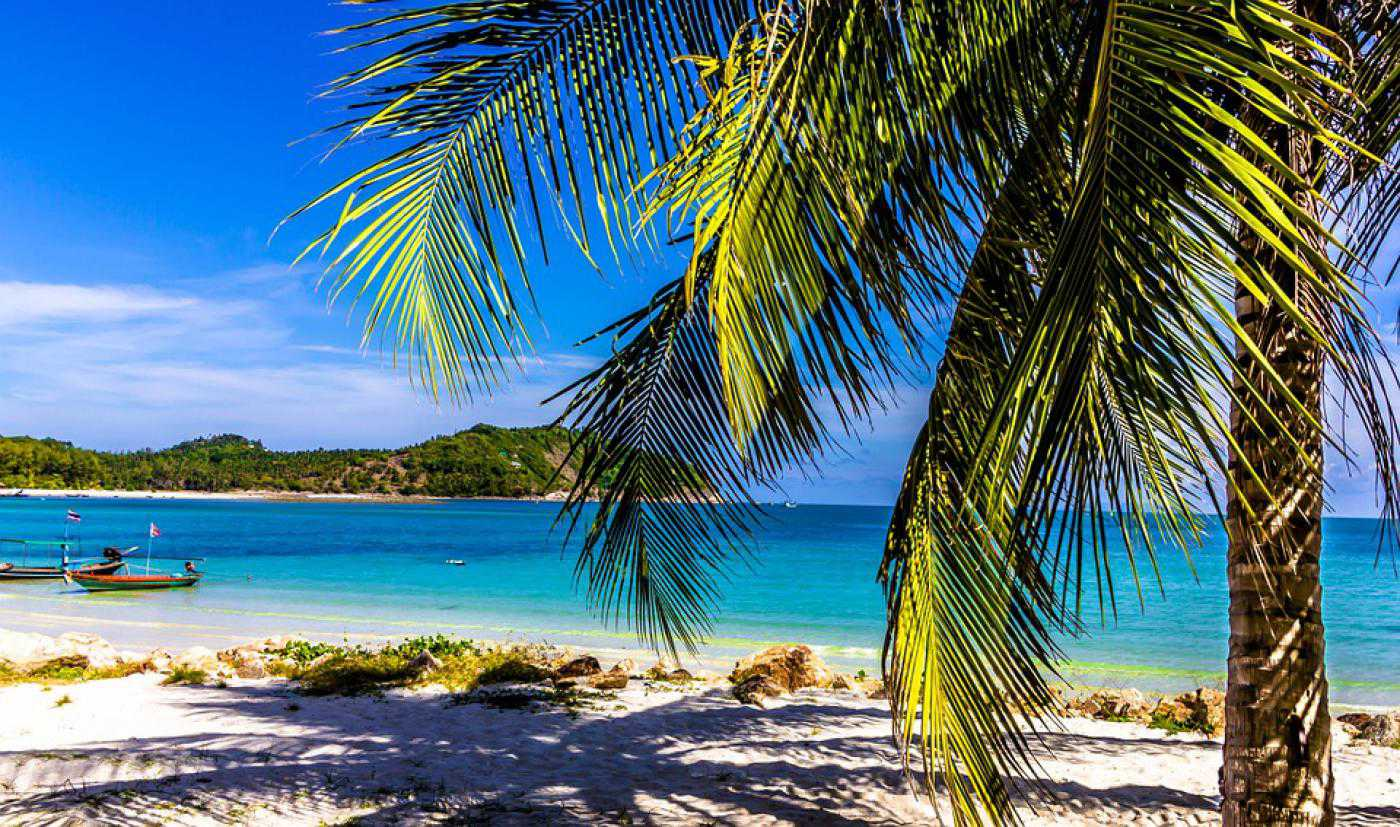 Holiday Beach Palm Sun Thailand - Poster and Wallpaper Download