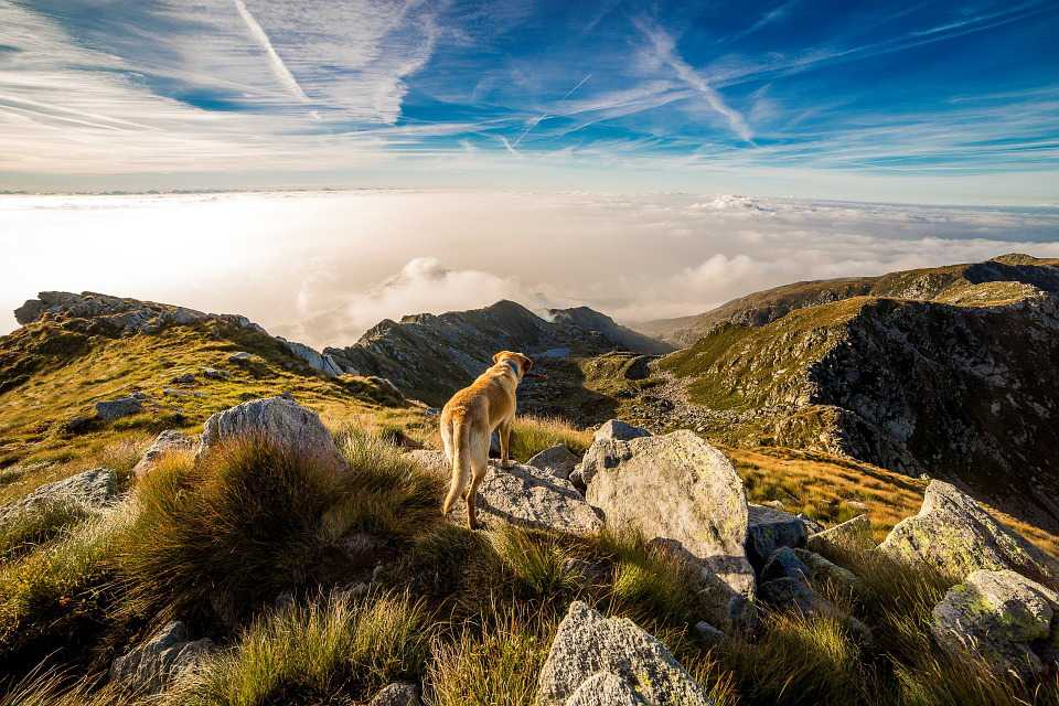 Dog Mountain Mombarone Clouds Landscape - Poster and Wallpaper Download
