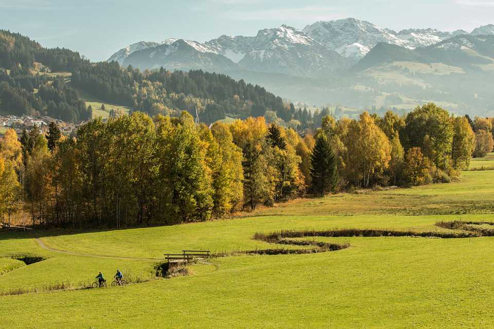 Allgäu Forest Meadow Bach Mountains - Poster and Wallpaper Download