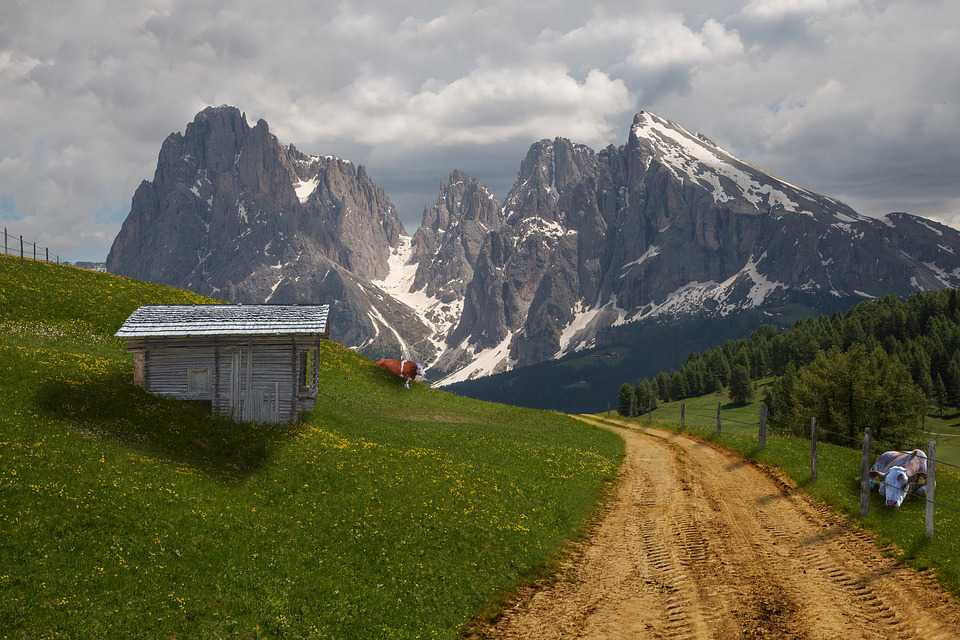 Alm Alpine Cow Collage Meadow Hut - Poster and Wallpaper Download