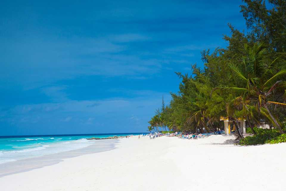 Barbados Beach Caribbean Coast - Poster and Wallpaper Download