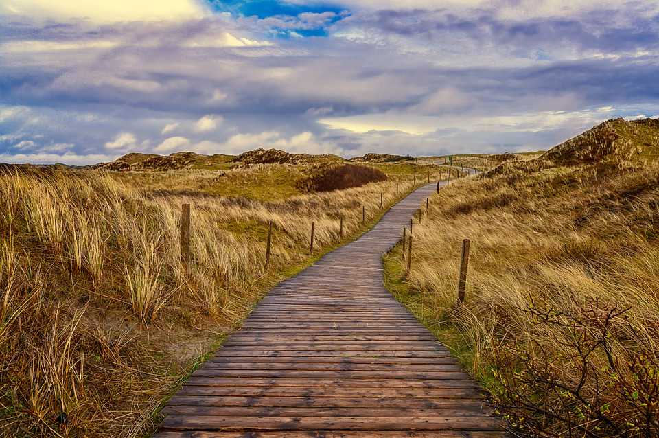Path Dunes Sand Pfad North Sea Ostsee - Poster and Wallpaper Download