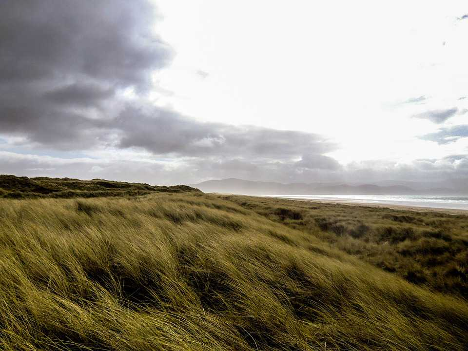 Gras Meadow Irland Clouds - Poster and Wallpaper Download