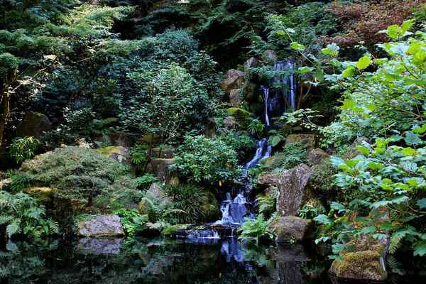 Poster Bachlauf Waterfall Zen Download