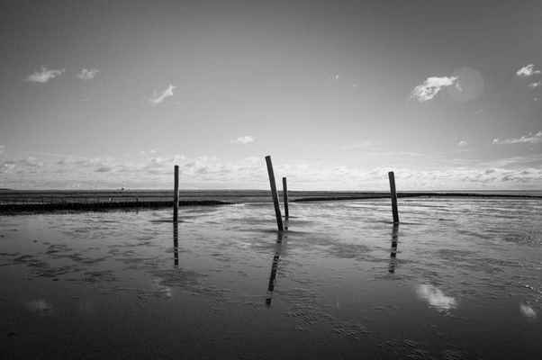 Poster Beach Piles Sky Black And White Horizon Download