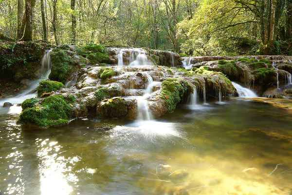 Poster Waterfall Water Nature Outdoor River Forest Stream