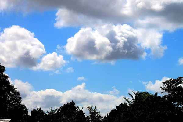 Poster Clouds Sky Cloud Trees Silhouette Silhouettes Download