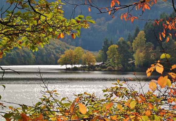 Poster Lake Waters Boat House Beech Leaves Autumn Download