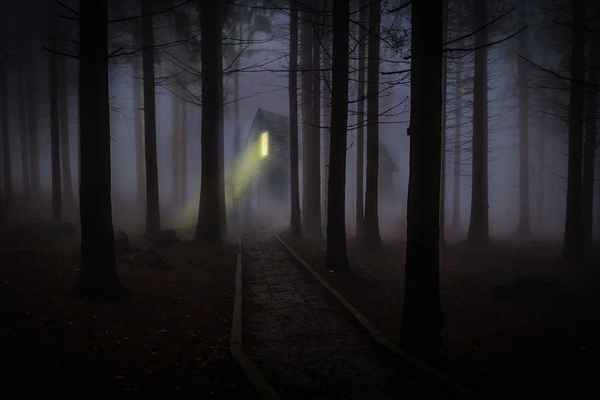 Poster Nebel Forest Download