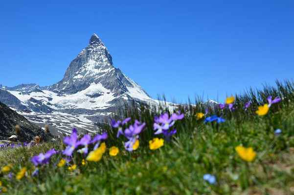 Poster Matterhorn Alpine Zermatt Mountains Gornergrat Valais Switzerland Download