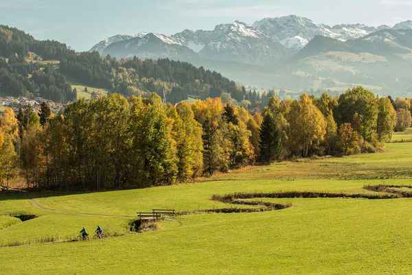 Poster Allgäu Forest Meadow Bach Mountains Download