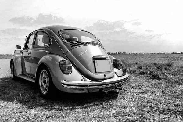 Poster Volkswagen Beetle Bug Black White Nature Oldtimer Download