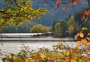 Poster Lake Waters Boat House Beech Leaves Autumn