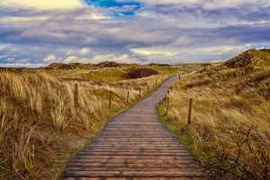 Poster Path Dunes Sand Pfad North Sea Ostsee Urlaub