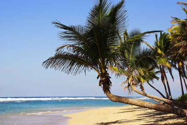 Poster Punta Cana Bavaro Beach Dominican Republic Holiday Download