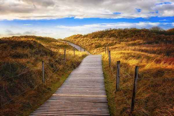 Poster Dunes Path Sea Beach Holzweg Wandern North Sea