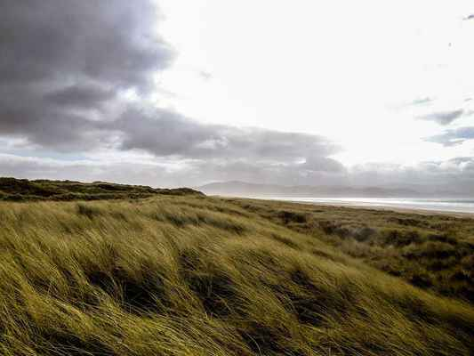 Poster Gras Meadow Irland Clouds Download